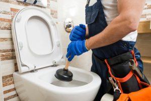 Emergency Toilet Repair Bromley